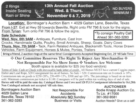 13th Annual Beeville Amish Auction (Bee County, Texas)