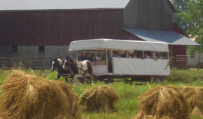 Amish tourist wagon