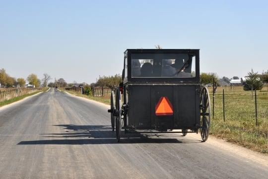adams-county-amish-carriage-box