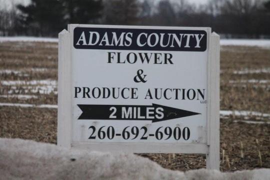 adams-county-flower-produce-auction