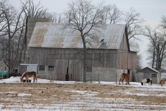 adams-county-indiana-barn