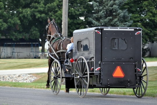 allen-county-amish-carriage-box