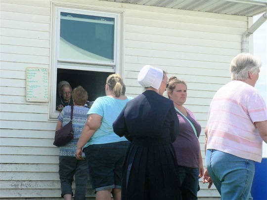 3 Things You Might Be Surprised To See At An Amish Auction