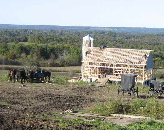 amish barn raising autumn