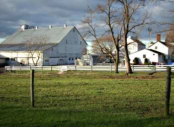 Amish Barn Restoration