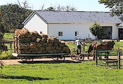 Amish Barns Indiana
