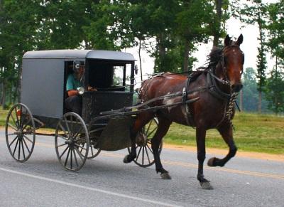 Amish Barns Maryland