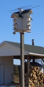 amish birdhouse virginia