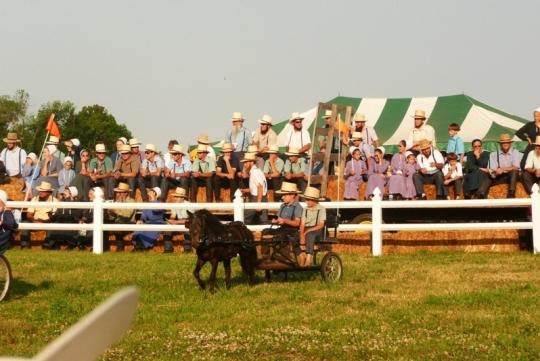 Amish Boys Pony Cart