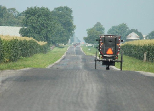 amish-buggies-arthur-illinois-settlement