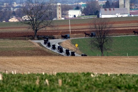 amish-buggies-in-funeral-procession