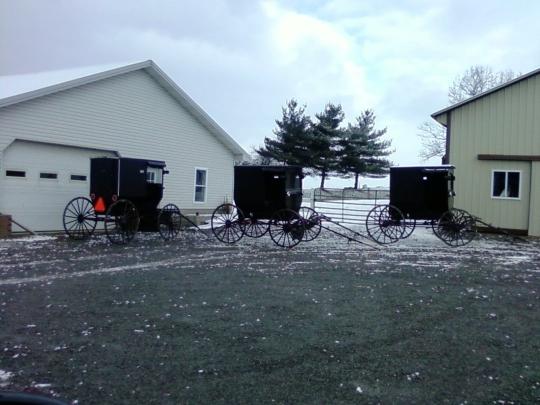amish buggies winter ohio