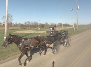 amish buggy baseball field