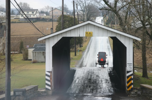 Amish Buggy Covered Bridge