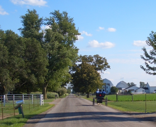 amish-buggy-indiana-road