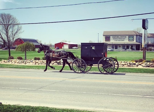 Amish & Mennonites Victims of 4 Major Financial Schemes Since 2008