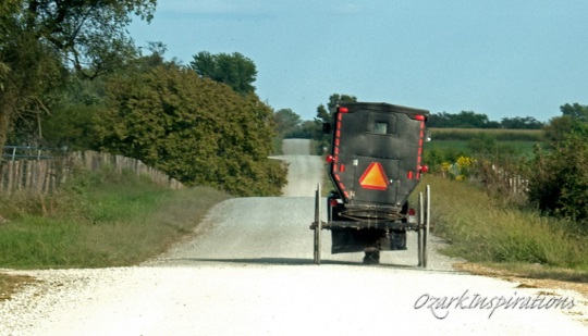 All About Amish Directories