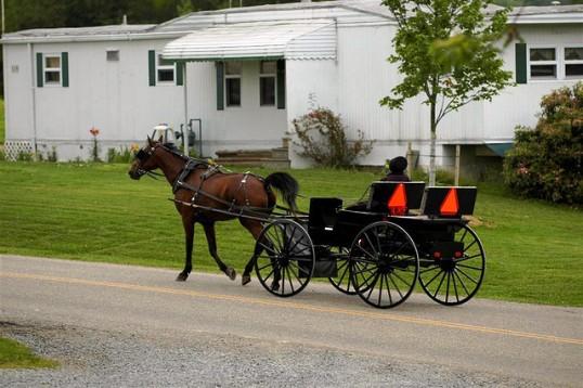 amish buggy safety