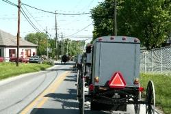 Amish Buggy Traffic Jam