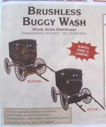 amish buggy wash