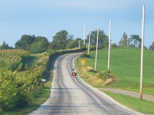 amish-carriage-on-curvy-road