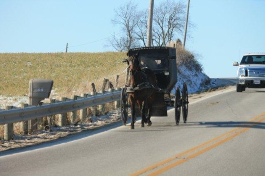 amish-carriage-on-the-road