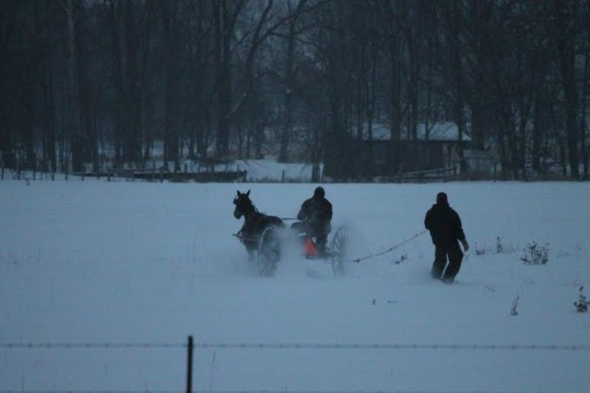 Amish Carriage Snowboard