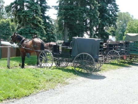 amish carriages holmes co