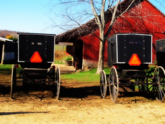 Amish Carriages Wisconsin