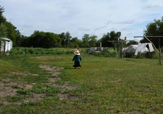 Amish Child MN