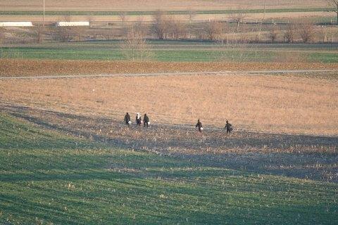 amish-children-field-walking