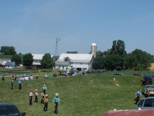 Amish Children Lebanon County Auction