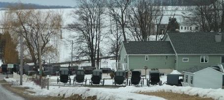 Amish Visitors