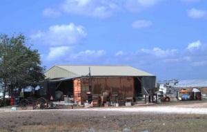 Amish Community Bee County TX