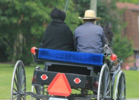 amish-couple-in-carriage