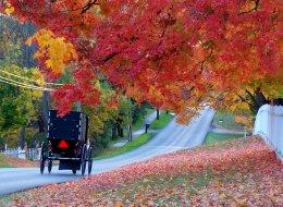 amish fall