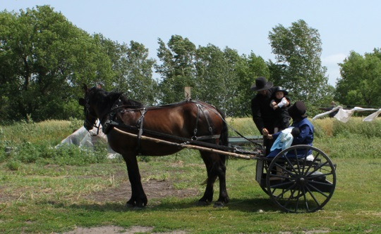 Amish Family Going To Church
