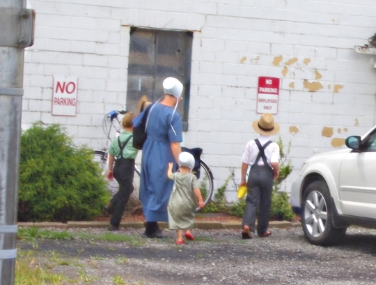 amish family holmes ohio