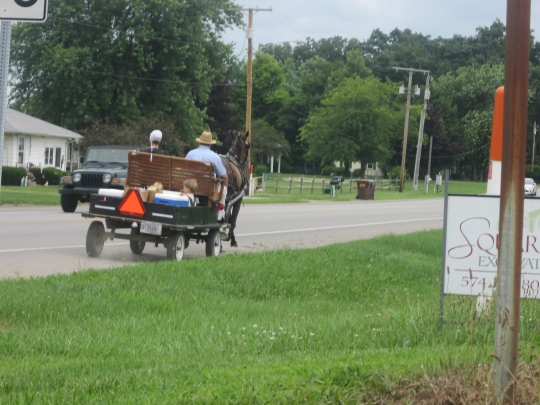 amish-family-riding