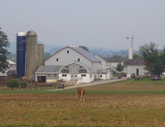 amish farm lanc county