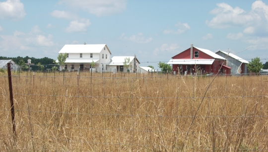 Amish Fields Tennessee