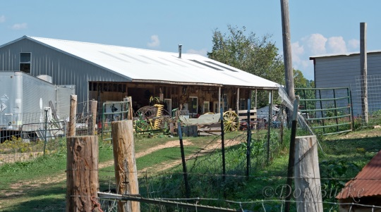 Amish Harness Shop Arkansas