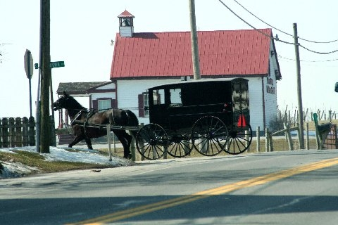 Amish Hearse