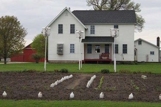 Amish Home Buchanan Co Iowa