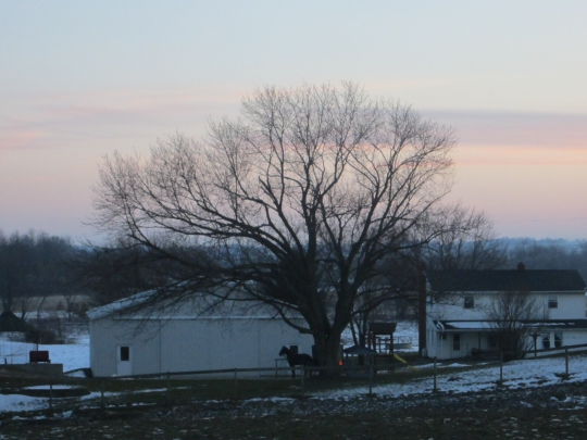 Amish Home Evening