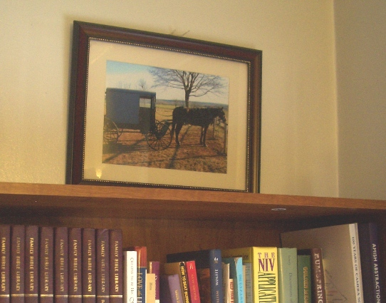 amish horse wall photo