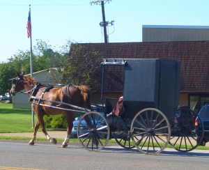 Amish, and religion, in court