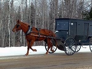 Amish in Maine
