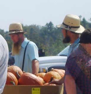 amish kentucky produce auction