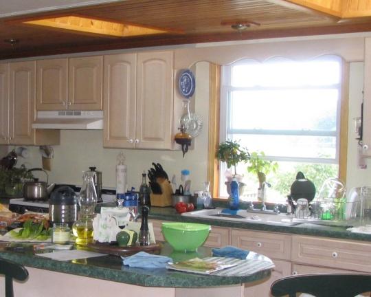 amish kitchen sink